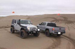 Dunes Day!