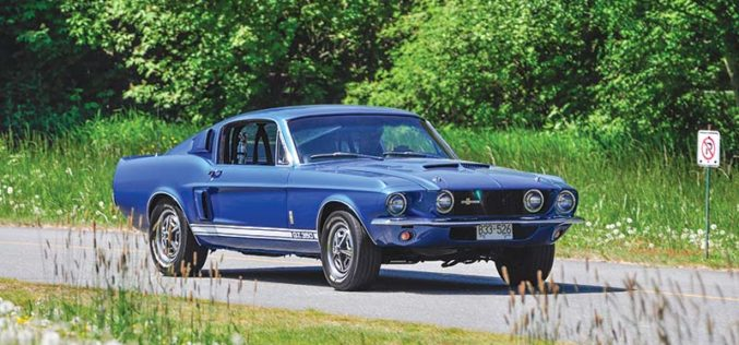 Elusive Icon: 1967 Shelby GT350